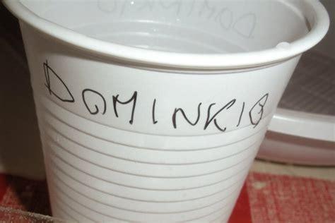 nomi dei bicchieri tutti i piatti di una festa delle medie dissapore