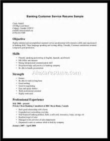 Examples Resume Skills skills for customer service resume sainde org