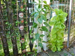 Vertical Garden Containers For Sale - 30 herb garden ideas to spice up your life garden lovers club