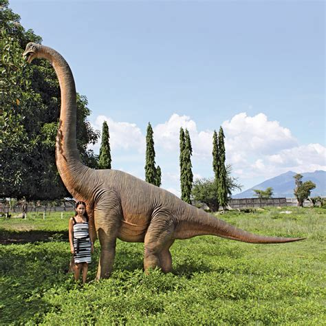 Design Inside Your Home by Massive Brachiosaurus Dinosaur Statue The Green Head