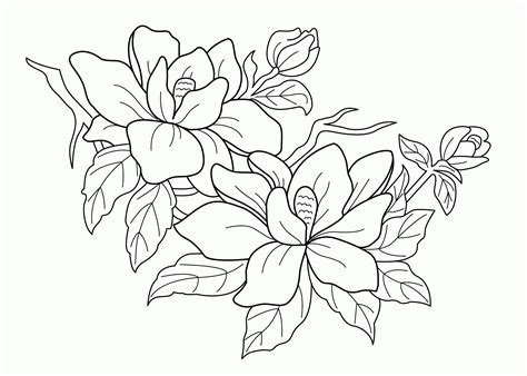 Rain Forest Trees Coloring Page Coloring Home Rainforest Plants Coloring Pages