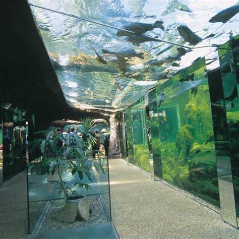 aquarium le le bugue dordogne lascaux dordogne your holidays in