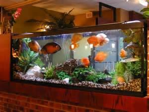 beautiful home fish tanks peceras con diferentes estilos para decorar
