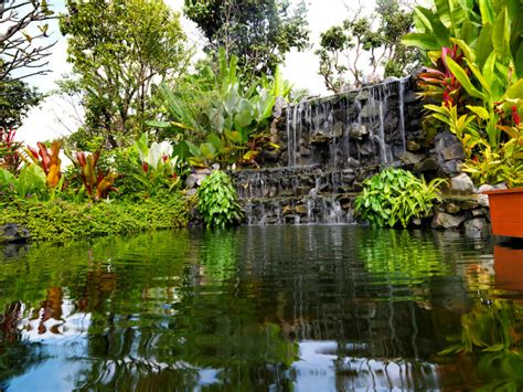 Rocks For Backyard 50 Pictures Of Backyard Garden Waterfalls Ideas Amp Designs