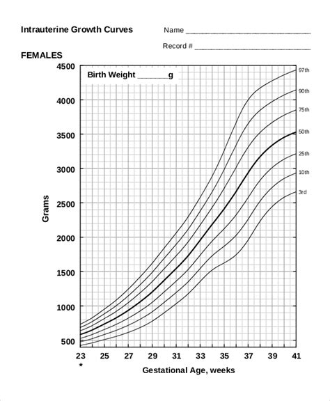 puppy weight chart template yorkie size and weight