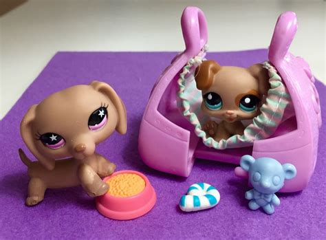 amazon com the stupell home decor collection dachshund littlest pet shop dachshund 932 adorable puppy w