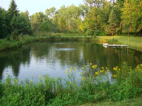 troline for backyard handicapped outdoors to pond fishing for the