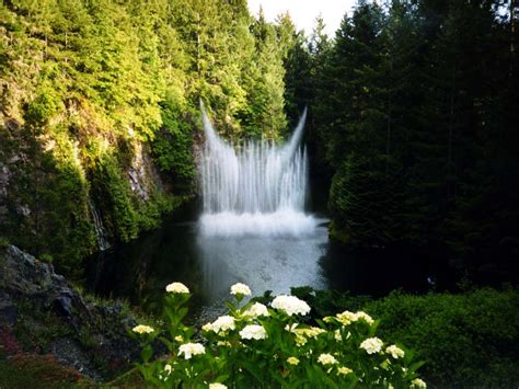 imagenes de paisajes lugubres fotos de paisajes preciosos
