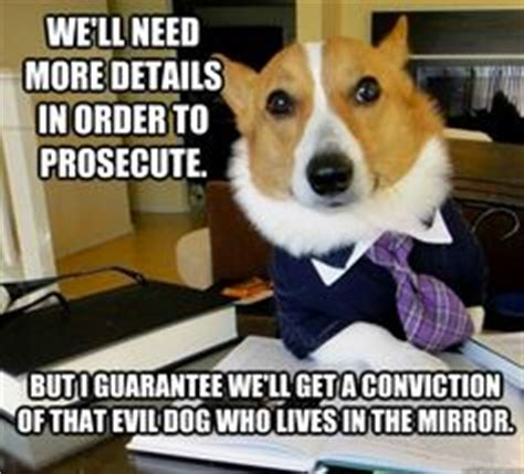 Corgi Lawyer Meme - 1000 images about legal humor on pinterest lawyers dog