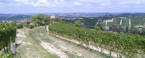 d alba it az agr biologica bolla lorenzo vini biologici diano d