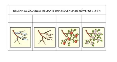 imagenes secuencias temporales para colorear ordenamos secuencias temporales fichas 1 104 orientaci 243 n