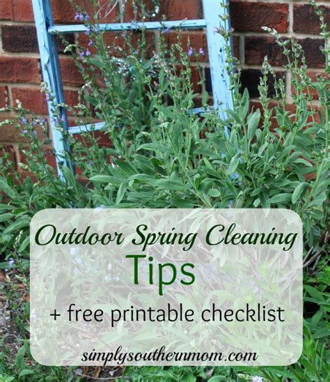 spring cleaning tips 2017 spring cleaning tips 2017 28 images real simple tips