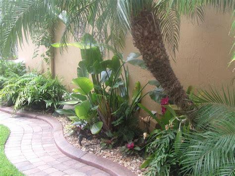 tropical florida