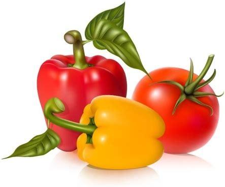 imagenes vectoriales gratuitas vegetable free vector download 909 free vector for