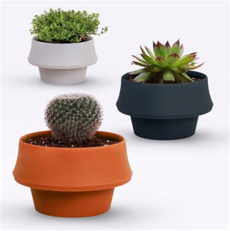 small house plants flexible pot expands to accommodate growing houseplants