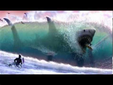 imagenes reales de un megalodon el megalodon espa 241 ol youtube