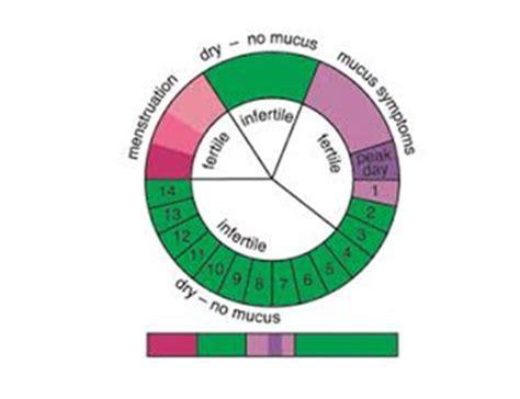 Calendar Method Calculator Safe Days Menstruation Cycle Safe Unsafe Pregnancy Periods Pregnancy