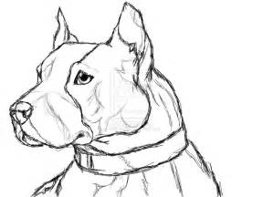 pitbull coloring pages blue nose pitbull coloring pages coloring pages