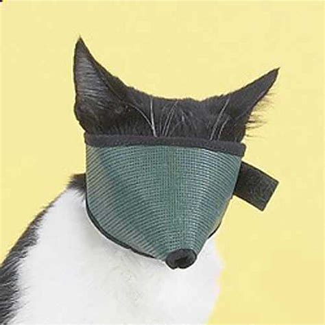 large muzzle large cat muzzle s pet supplies