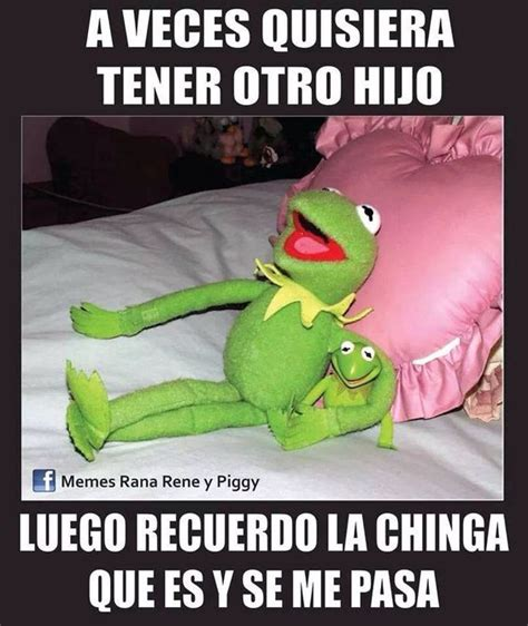 Memes Rana Rene - lmfao lol and memes on pinterest