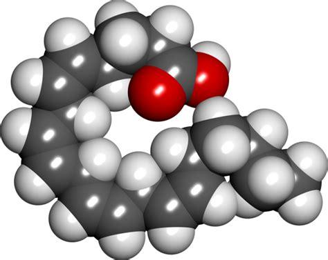 acido arachidonico alimenti gli omega 3 e l infiammazione il cibo colorato come farmaco