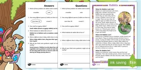 book report on rabbit ks1 rabbit differentiated reading comprehension activity