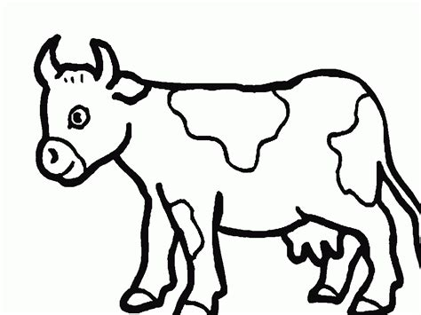 cow spots coloring page cow spots coloring pages