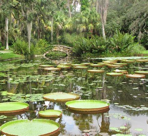 mckee botanical gardens vero fl mckee gardens