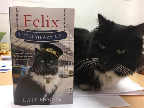 felix the railway cat books station cats of the uk crosscountry