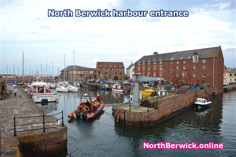 isle of may boat trips north berwick scottish seabird centre boat trips lobster house