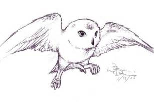 hedwig by blondboy100886 on deviantart