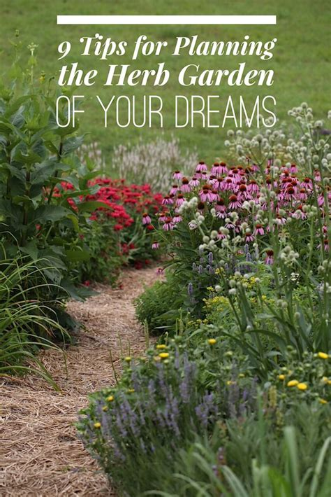 herb garden basics 9 tips for planning the herb garden of your dreams