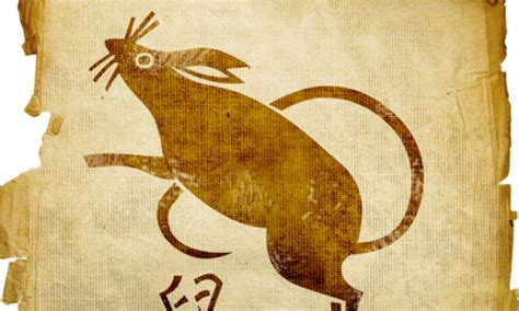 Play Imaginative Zodiac Rat 1 8 things to about the zodiac sign rat