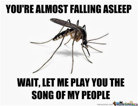 Mosquito Meme - crazy and random