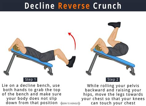 decline ab bench exercises decline reverse crunch on bench how to do benefits pictures