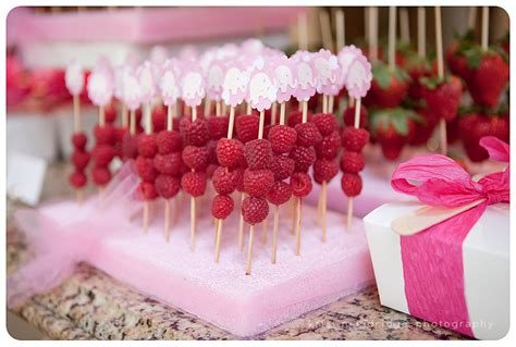 Girly Baby Shower Theme Ideas by Girly Pink Baby Shower Photographer