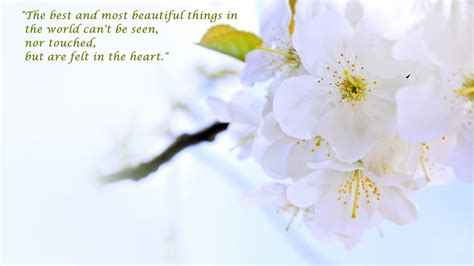 world s beautiful things around us beautiful wallpapers beautiful things 100 beautiful things beautiful things