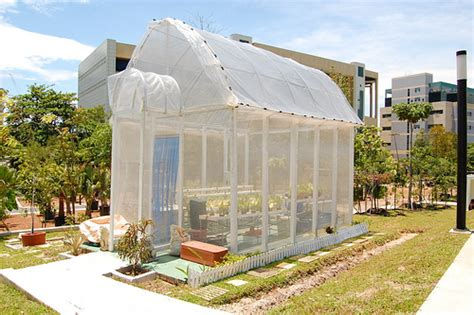 how to build a green home how to build a green house diy guides