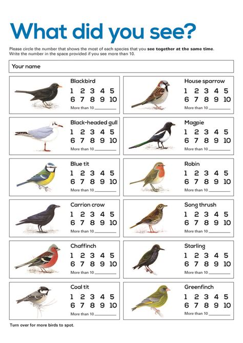Rspb Great Garden Birdwatch Results Are In by Bird Counting Sheet Free Resource For Big Schools