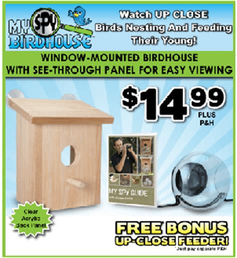 my spy birdhouse review can you really get up close to