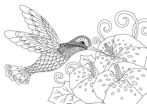 coloring book birds and flowers stress relief coloring book garden designs mandalas animals florals and paisley patterns books loren s world loren s world trends