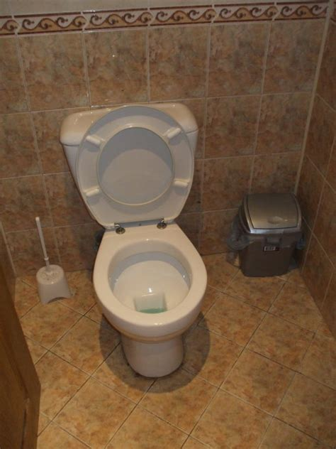 modern toilets canada where do i put used toilet paper trash or toilet bowl or