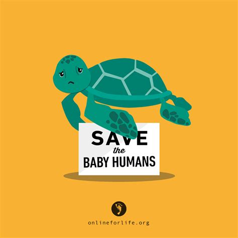 saves baby quot save the baby humans quot sea turtle for