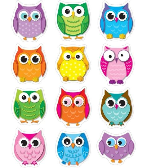 owl colors best 25 colorful owl ideas on cool drawings