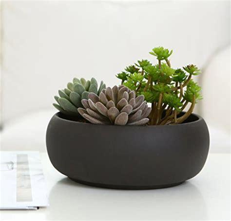 modern unglazed round ceramic succulent cactus planter pot