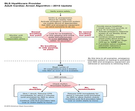 cpr flowchart cpr guidelines 2015 printable the knownledge