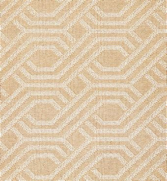 wall  wall carpet flooring  abc home carpet