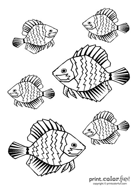 Tropical fish coloring page   Print. Color. Fun!