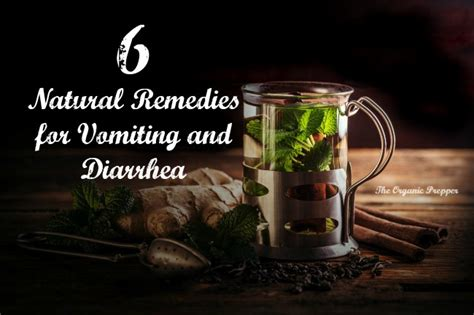 diarrhea and vomiting home remedy 6 remedies for vomiting and diarrhea the organic prepper
