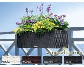 railing planters planter boxes balcony planters windowbox com